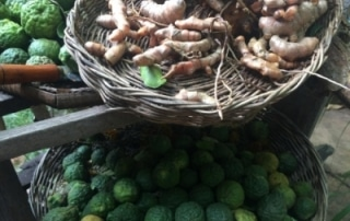 herbal-medicine-siemreap