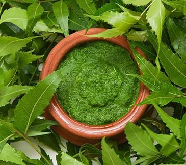 Kaffir Lime Extracts
